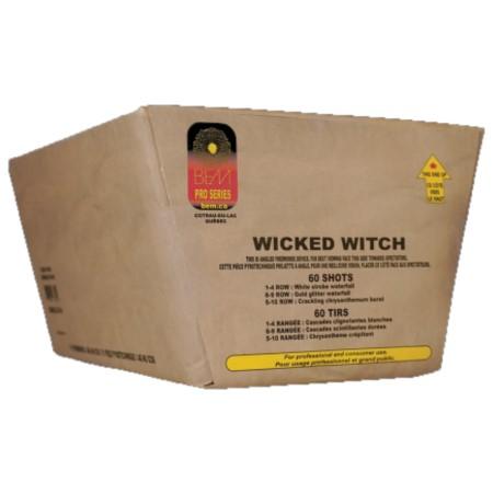 BEM Wicked Witch